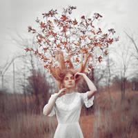 tree's dreams by Anna1Anna