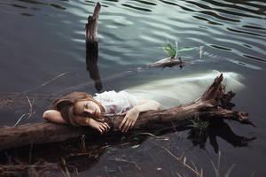 swamp by Anna1Anna