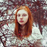 ginger by Anna1Anna