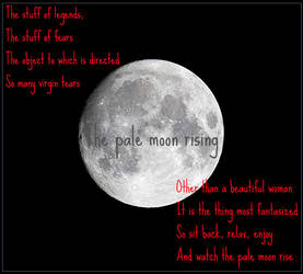 Pale Moon Rising by TheseKrimzonFlames