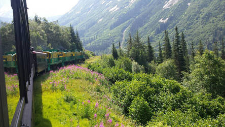 An Alaskan Train Ride by Fullmetalfreak115