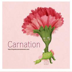 Hoa Cam Chuong - Carnation by migoibonmat
