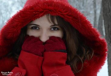 Winter joy by AnitaBright