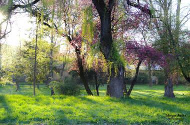 Ready for springtime by AnitaBright