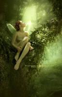 ..::Where Fairies Live::.. by Yosia82