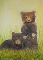 Bear Twins by Supach