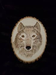 Wolf  pyrography done 12-2018 by Majeeka