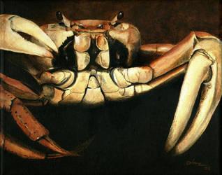 Latin Crab by tropicart