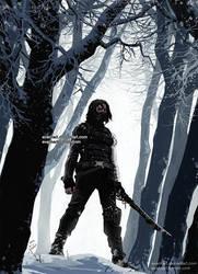 winter soldier by evankart