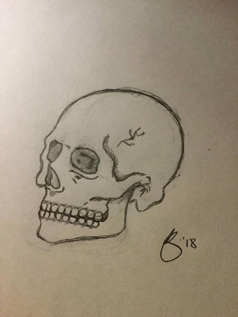 Skull by XEmoRainbowEaterX