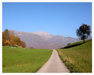 Autumn: the path to Wonderland by LarsMaresca