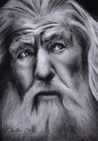 Gandalf the Grey by Aj3sh