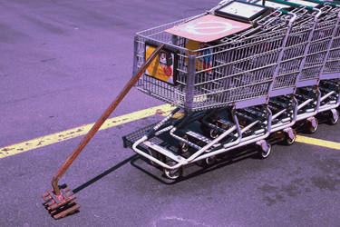 Hostage Shopping Carts by ebbixx