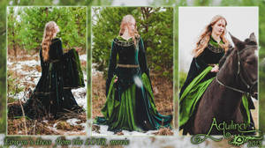 Eowyn cosplay, 2013 by Flower-in-dust