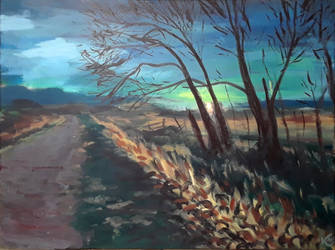 Owl Canyon Road by kaupaint