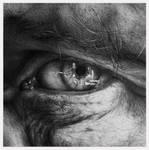 Through The Iris II by arminmersmann