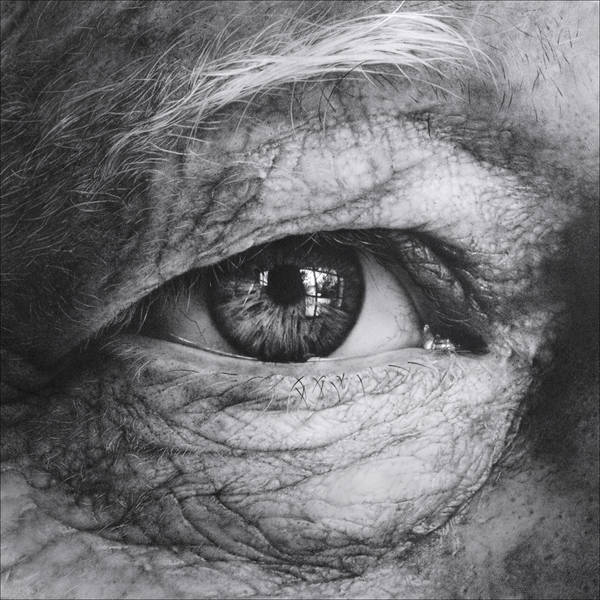 Through the Iris IV by arminmersmann