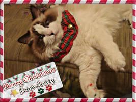 Merry Xmas from Jezzy by toxicdesire