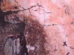 Brazil Texture by Amor-Fati-Stock