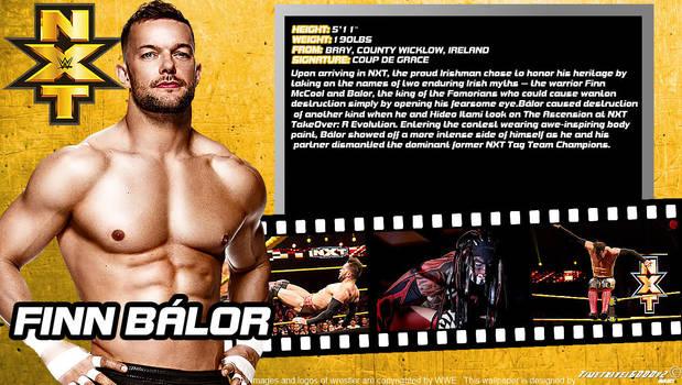 WWE Finn Balor ID Wallpaper Widescreen by Timetravel6000v2