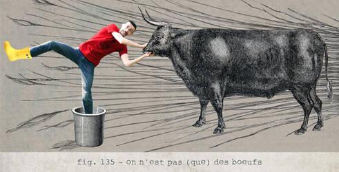 fig. 135 : on n'est pas -que- des boeufs by stringraphy