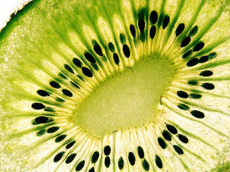kiwi slice 2 by maedchenmitherz