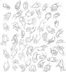 Handy Hands by Quackamos