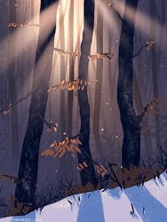 Winter forest practice by Forheksed