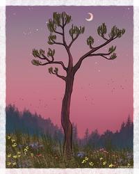Tree by Forheksed