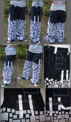 pants: inverse disintegration by gryphonsshadow