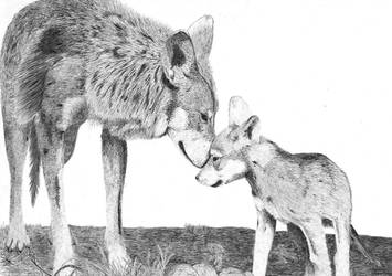 Wolfs by Cac0ps