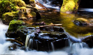 Tiny Falls by DarkroomMaster