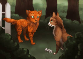 [CONTEST] And Fireheart met his nephew by Project--Phoenix