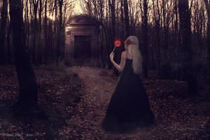 Sweet Darkness by MarisaHaut