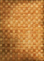 Woven Mat by PaulineMoss