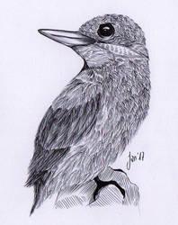 Bird II by notanegyptianspirit