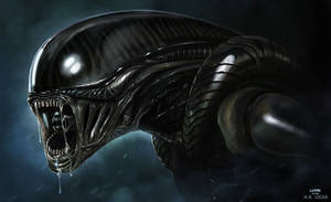 ALIEN - H.R. GIGER PITCH - by DanLuVisiArt
