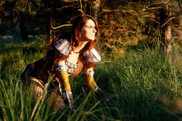 Aela the Huntress II by o0shokei0o