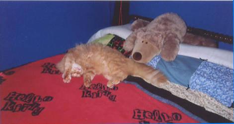 Hello Kitty by tearsofthunder