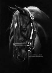 Horse drawing by Ilojleen