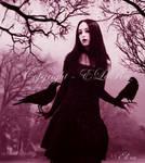 Lady of Crows by Eternal-Dream-Art