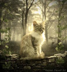 The white cat by Eternal-Dream-Art
