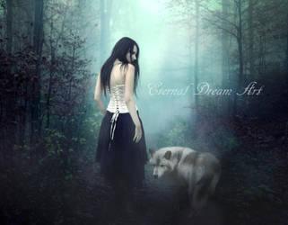The journey by Eternal-Dream-Art