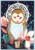 Bindi Owl pt. II by folderol