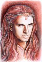 Maedhros portrait by JankaLateckova