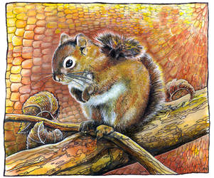 Squirrel by JankaLateckova