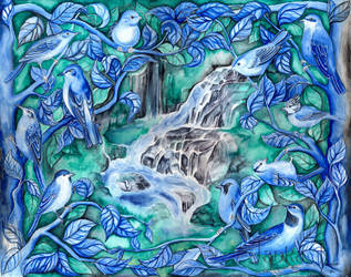 Birds by JankaLateckova