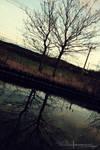 A Winters Walk Down Reflection. by ElementaryDearWatson