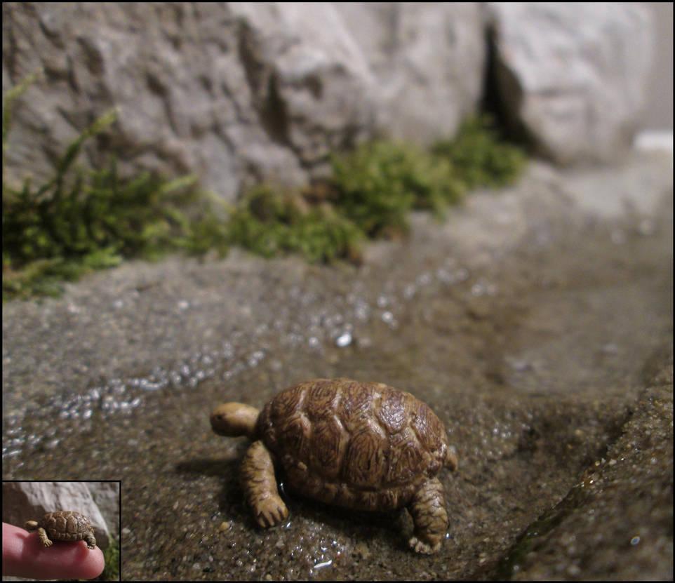 One More Turtle by AtriellMe