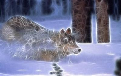 Wolf by Kimikatt19